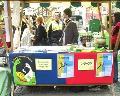 Nevladne organizacije in festival LUPA