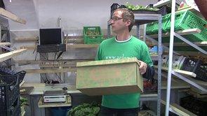 Primer dobre prakse: Zeleni zabojček