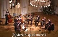 Koncert: Matjaž Rebolj and friends, 3. abonmajski cikel SAVITRA