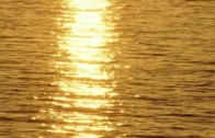 Ekomatika 6: Sončne elektrarne, nove možnosti za bolj zeleno prihodnost