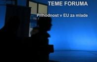 Državljanski forum – Maribor – povzetek