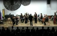 Koncert godalnega orkestra Arseia