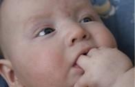 NA KRaTKO: Začimbe in dojenčki