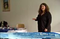 Predavanje Nataše Zorc: Kristali – energijski izviri
