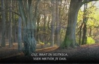 Marijan Lipovšek: VSI SVETI